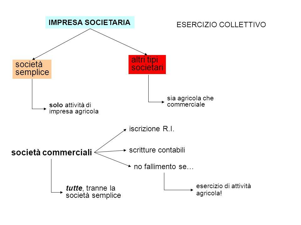 IMPRESA SOCIETARIA ESERCIZIO COLLETTIVO società semplice altri tipi societari solo attività di impresa agricola sia agricola che commerciale società commerciali tutte, tranne la società semplice iscrizione R.I.