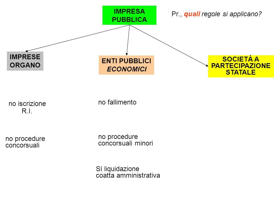 IMPRESA PUBBLICA ENTI PUBBLICI ECONOMICI Pr., quali regole si applicano.
