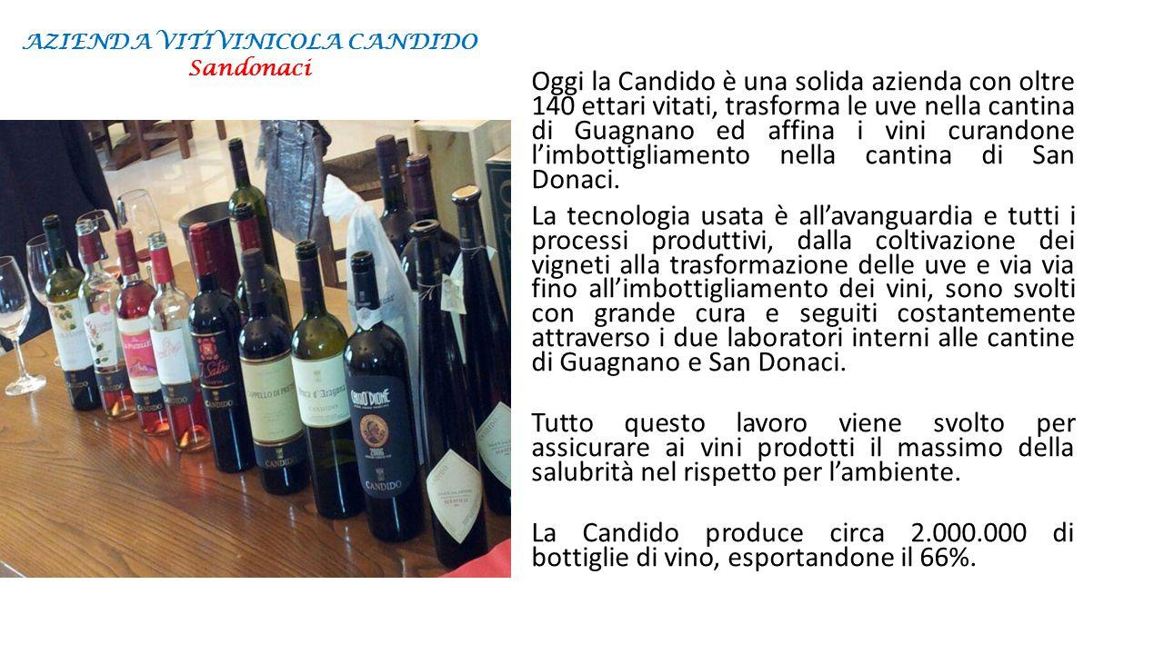 Oggi la Candido è una solida azienda con oltre 140 ettari vitati, trasforma le uve nella cantina di Guagnano ed affina i vini curandone l'imbottigliamento nella cantina di San Donaci.