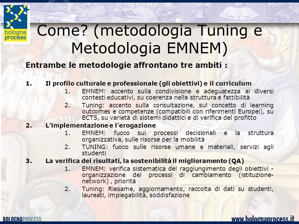 Come? (metodologia Tuning e Metodologia EMNEM) Entrambe le metodologie affrontano tre ambiti : 1.Il profilo culturale e professionale (gli obiettivi)