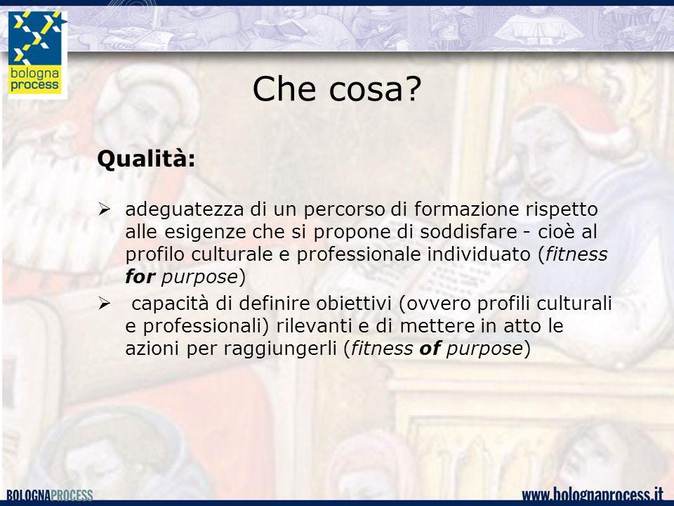 Che cosa? Qualità:  adeguatezza di un percorso di formazione rispetto alle esigenze che si propone di soddisfare - cioè al profilo culturale e profes