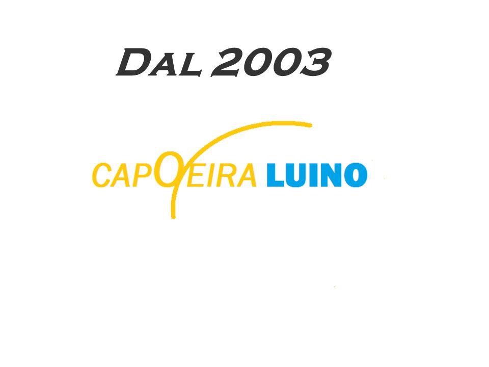 La capoeira è divisa in diversi stili: la Capoeira primitiva, la Capoeira Angola, la Capoeira Regional, la Capoeira Estilizada, la Capoeira Contemporanea.