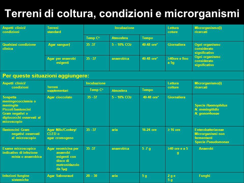 Terreni di coltura, condizioni e microrganismi Aspetti clinici/ condizioni Terreni standard IncubazioneLettura coture Microrganismo(i) ricercati Temp