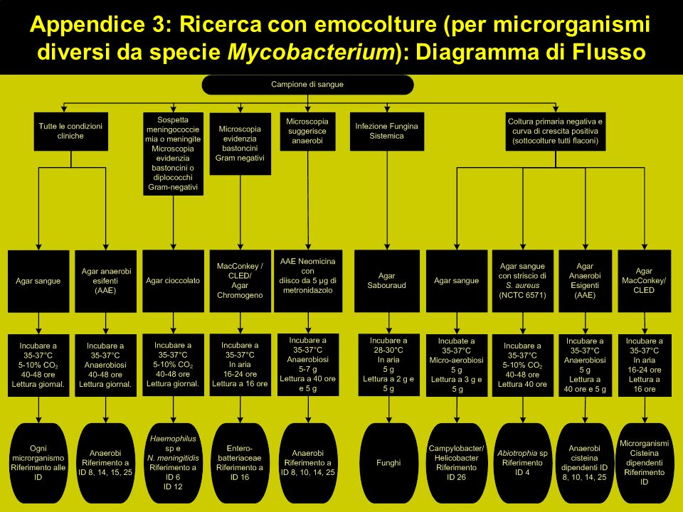 Appendice 3: Ricerca con emocolture (per microrganismi diversi da specie Mycobacterium): Diagramma di Flusso