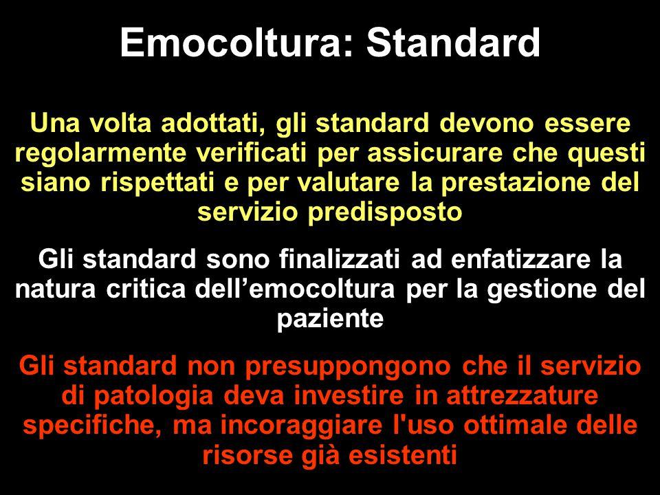 Una volta adottati, gli standard devono essere regolarmente verificati per assicurare che questi siano rispettati e per valutare la prestazione del se