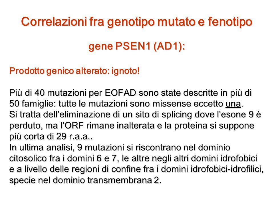Correlazioni fra genotipo mutato e fenotipo gene PSEN1 (AD1): Prodotto genico alterato: ignoto! Più di 40 mutazioni per EOFAD sono state descritte in