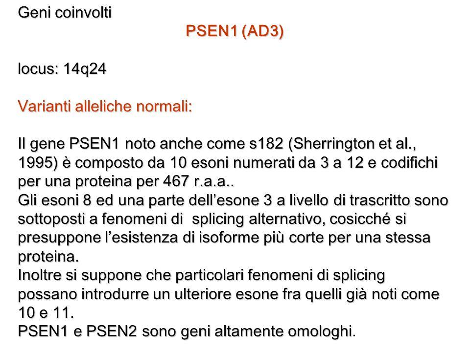 Geni coinvolti PSEN1 (AD3) locus: 14q24 Varianti alleliche normali: Il gene PSEN1 noto anche come s182 (Sherrington et al., 1995) è composto da 10 eso