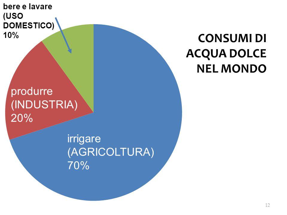 irrigare (AGRICOLTURA) 70% produrre (INDUSTRIA) 20% bere e lavare (USO DOMESTICO) 10% CONSUMI DI ACQUA DOLCE NEL MONDO 12