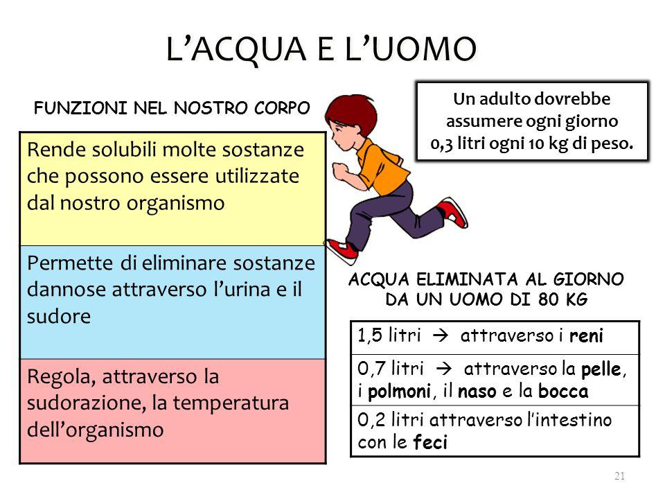 L'ACQUA E L'UOMO Un adulto dovrebbe assumere ogni giorno 0,3 litri ogni 10 kg di peso. FUNZIONI NEL NOSTRO CORPO Rende solubili molte sostanze che pos