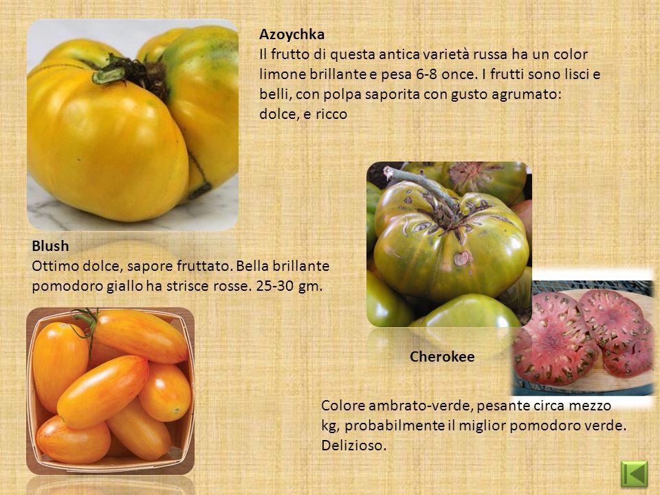 Azoychka Il frutto di questa antica varietà russa ha un color limone brillante e pesa 6-8 once. I frutti sono lisci e belli, con polpa saporita con gu