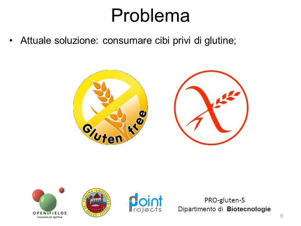 Attuale soluzione: consumare cibi privi di glutine; PRO-gluten-S Dipartimento di Biotecnologie 6 Problema