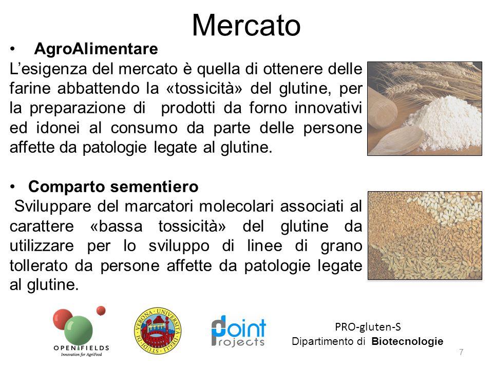 7 PRO-gluten-S Dipartimento di Biotecnologie Mercato AgroAlimentare L'esigenza del mercato è quella di ottenere delle farine abbattendo la «tossicità»