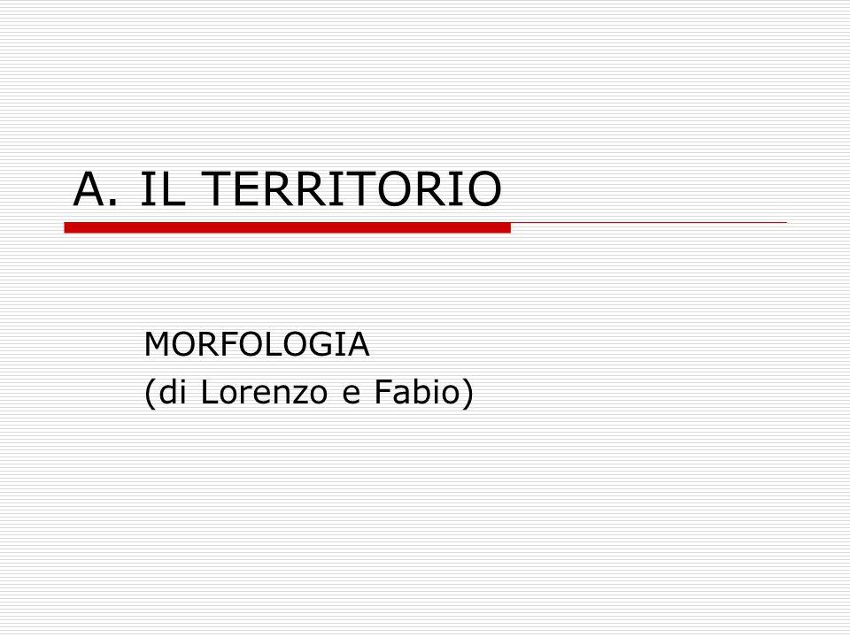 G. CURIOSITA' di Maria Vittoria e Leila
