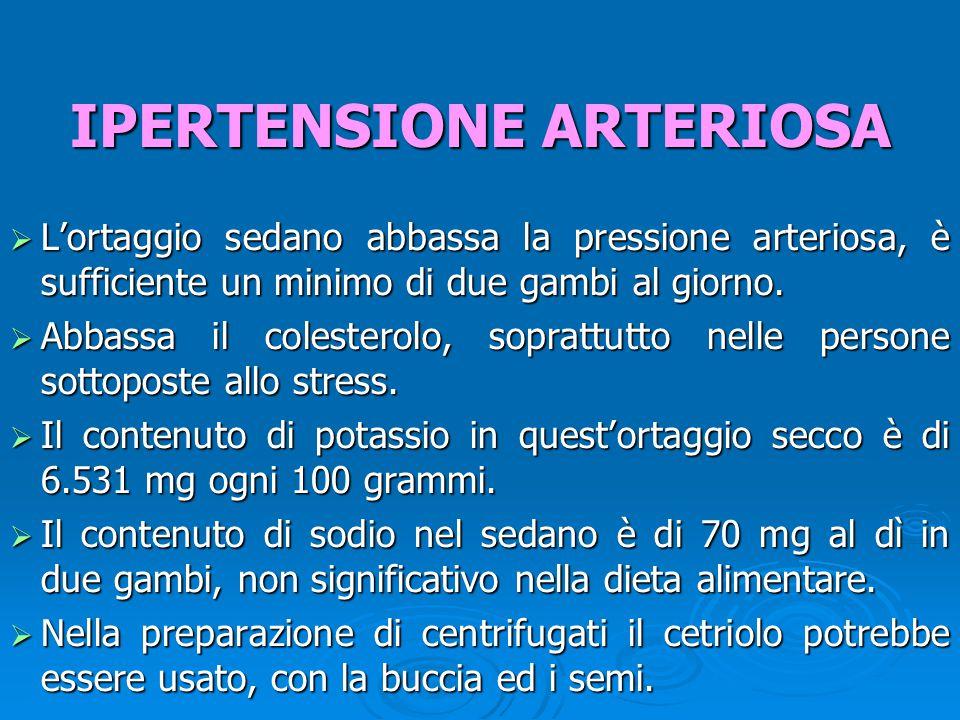  L'ortaggio sedano abbassa la pressione arteriosa, è sufficiente un minimo di due gambi al giorno.