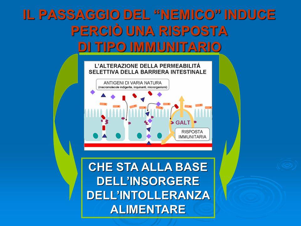 IL PASSAGGIO DEL NEMICO INDUCE PERCIÒ UNA RISPOSTA DI TIPO IMMUNITARIO CHE STA ALLA BASE DELL'INSORGERE DELL'INTOLLERANZA ALIMENTARE