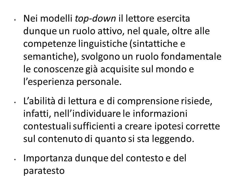 Nei modelli top-down il lettore esercita dunque un ruolo attivo, nel quale, oltre alle competenze linguistiche (sintattiche e semantiche), svolgono un
