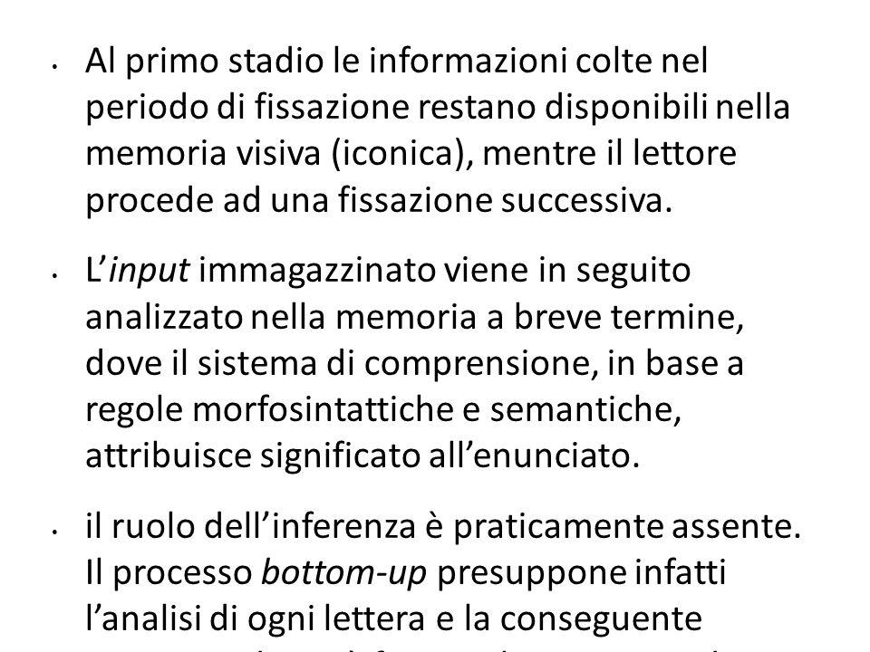 Al primo stadio le informazioni colte nel periodo di fissazione restano disponibili nella memoria visiva (iconica), mentre il lettore procede ad una f