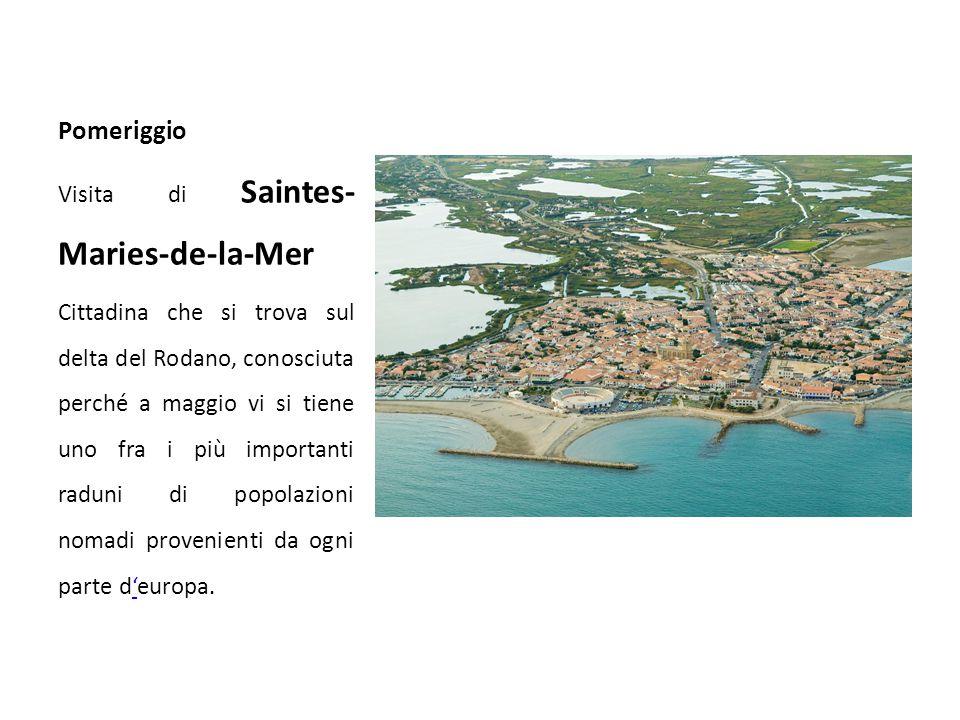 Pomeriggio Visita di Saintes- Maries-de-la-Mer Cittadina che si trova sul delta del Rodano, conosciuta perché a maggio vi si tiene uno fra i più importanti raduni di popolazioni nomadi provenienti da ogni parte d'europa.'