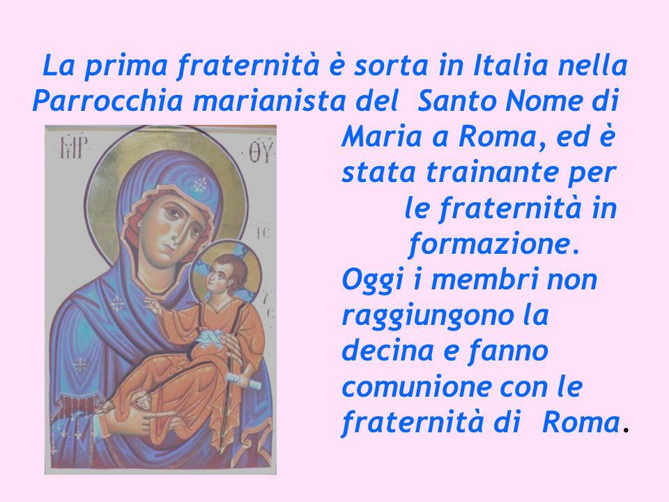La prima fraternità è sorta in Italia nella Parrocchia marianista del Santo Nome di Maria a Roma, ed è stata trainante per le fraternità in formazione.