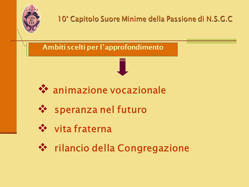 10° Capitolo Suore Minime della Passione di N.S.G.C Ambiti scelti per l'approfondimento  animazione vocazionale  speranza nel futuro  vita fraterna
