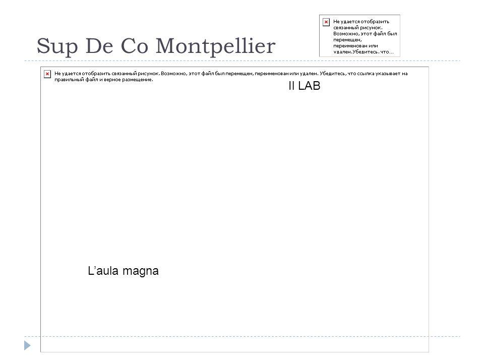 Sup De Co Montpellier Il LAB L'aula magna