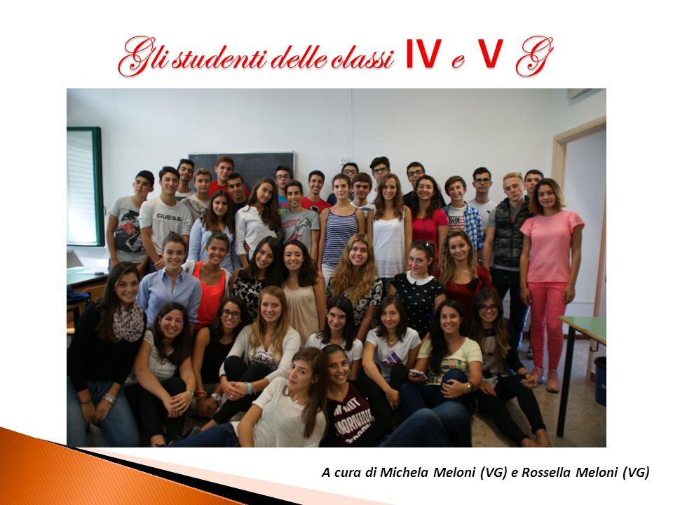 A cura di Michela Meloni (VG) e Rossella Meloni (VG)