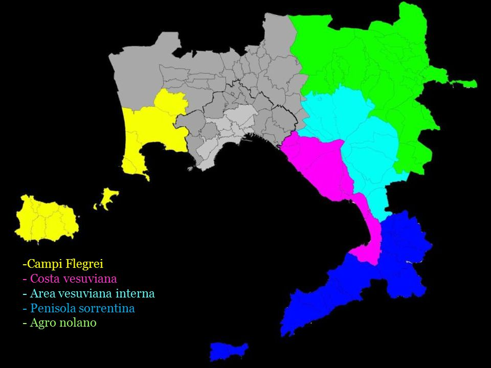 -Campi Flegrei - Costa vesuviana - Area vesuviana interna - Penisola sorrentina - Agro nolano