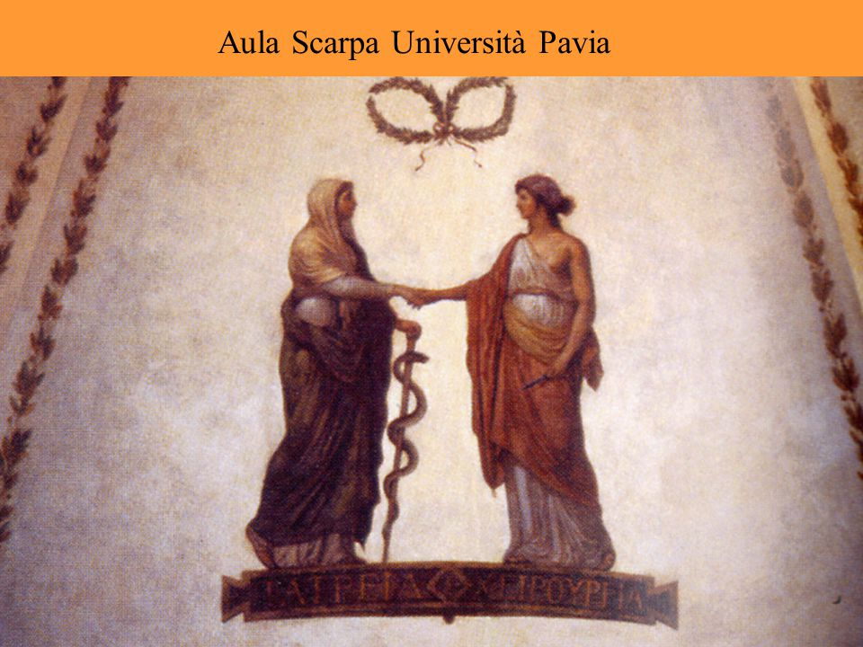 Aula Scarpa Università Pavia