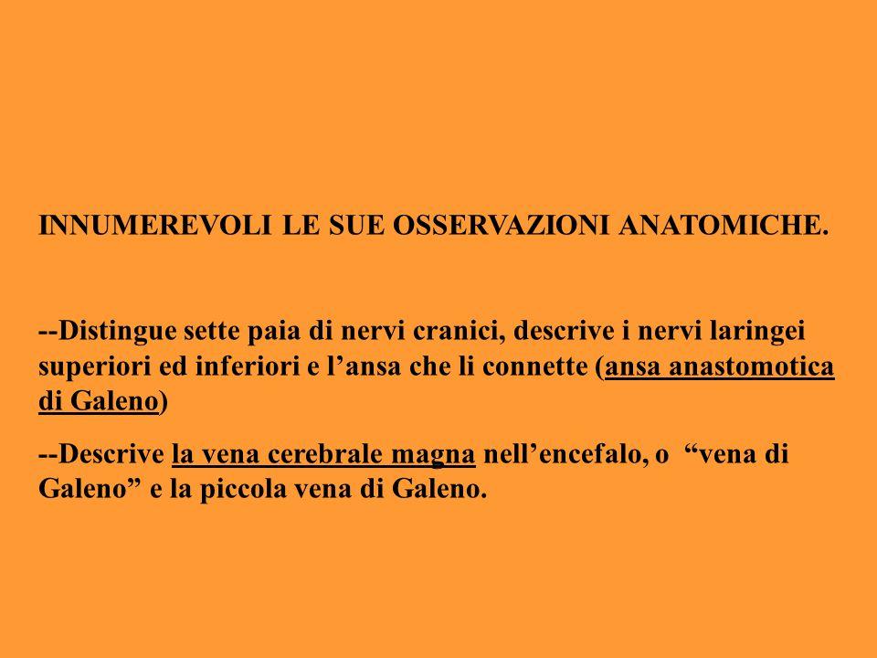 INNUMEREVOLI LE SUE OSSERVAZIONI ANATOMICHE. --Distingue sette paia di nervi cranici, descrive i nervi laringei superiori ed inferiori e l'ansa che li