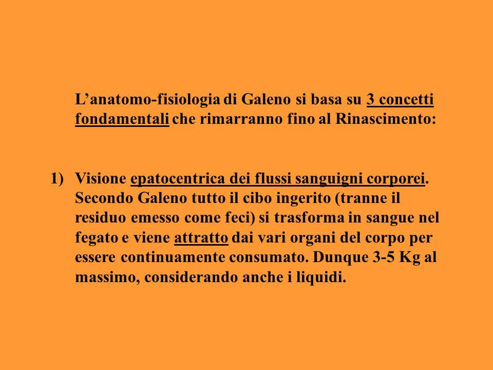 L'anatomo-fisiologia di Galeno si basa su 3 concetti fondamentali che rimarranno fino al Rinascimento: 1)Visione epatocentrica dei flussi sanguigni co