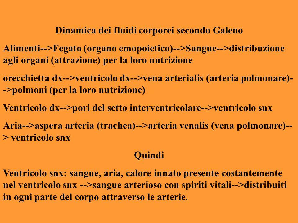Dinamica dei fluidi corporei secondo Galeno Alimenti-->Fegato (organo emopoietico)-->Sangue-->distribuzione agli organi (attrazione) per la loro nutri