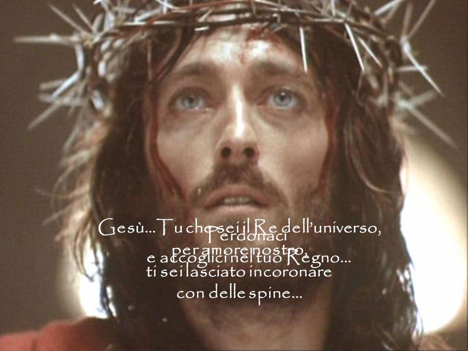 Gesù…Tu che sei il Re dell'universo, per amore nostro, ti sei lasciato incoronare con delle spine… Perdonaci e accoglici nel tuo Regno…