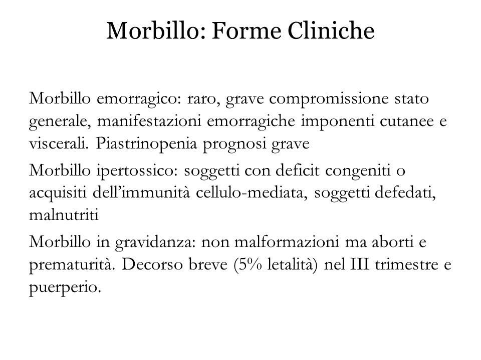 Morbillo: Forme Cliniche Morbillo emorragico: raro, grave compromissione stato generale, manifestazioni emorragiche imponenti cutanee e viscerali. Pia