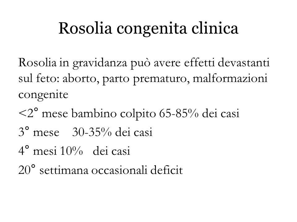 Rosolia congenita clinica Rosolia in gravidanza può avere effetti devastanti sul feto: aborto, parto prematuro, malformazioni congenite <2° mese bambi