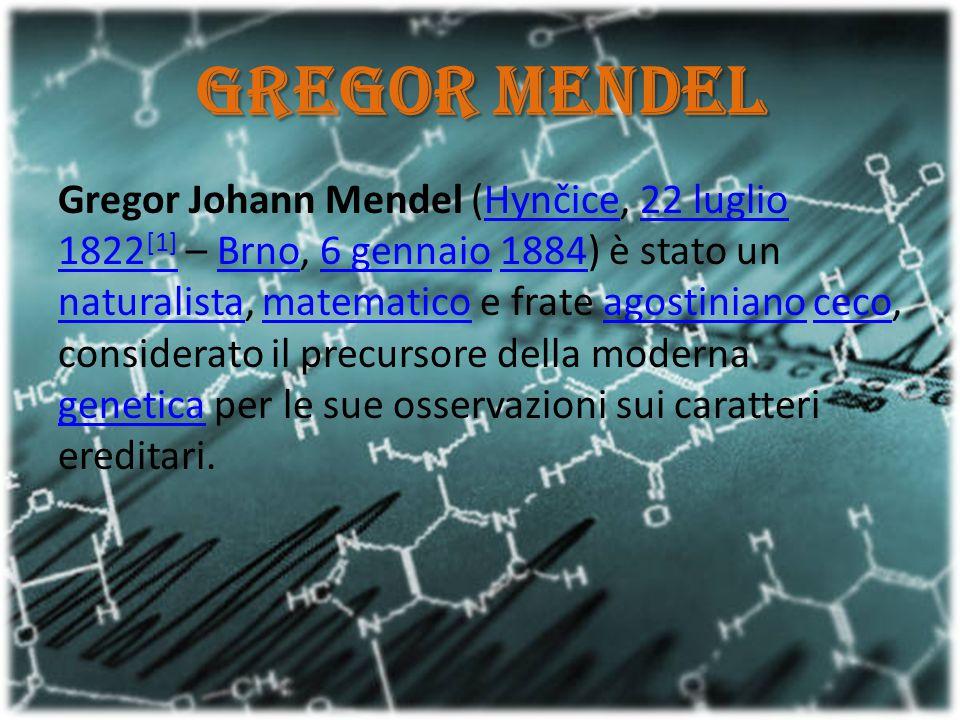 Gregor Mendel Gregor Johann Mendel (Hynčice, 22 luglio 1822 [1] – Brno, 6 gennaio 1884) è stato un naturalista, matematico e frate agostiniano ceco, c