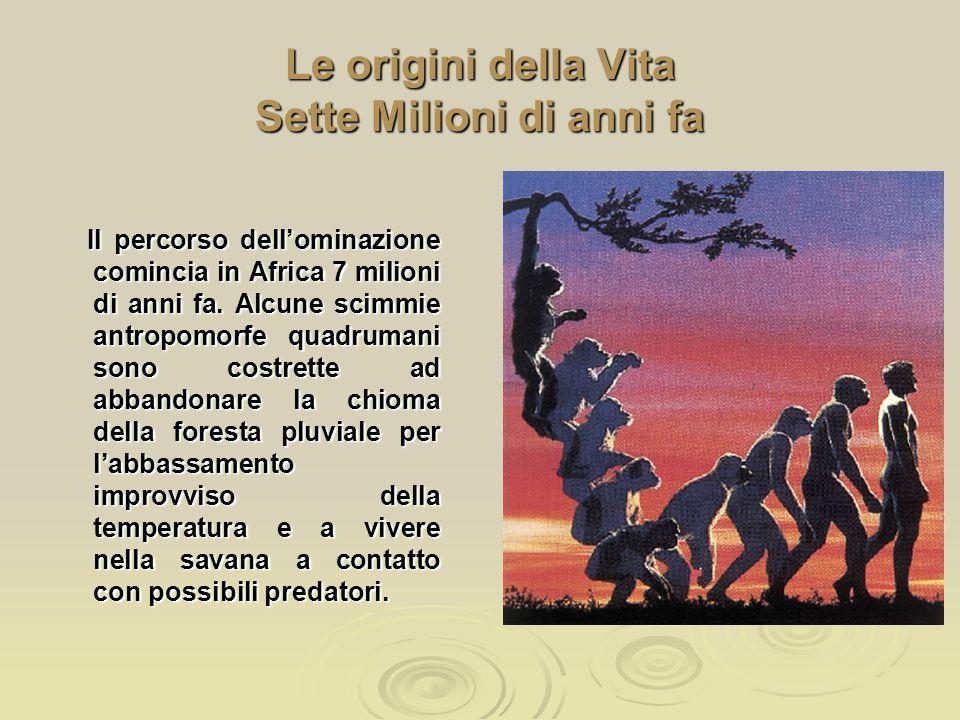 Le origini della Vita Sette Milioni di anni fa Il percorso dell'ominazione comincia in Africa 7 milioni di anni fa. Alcune scimmie antropomorfe quadru