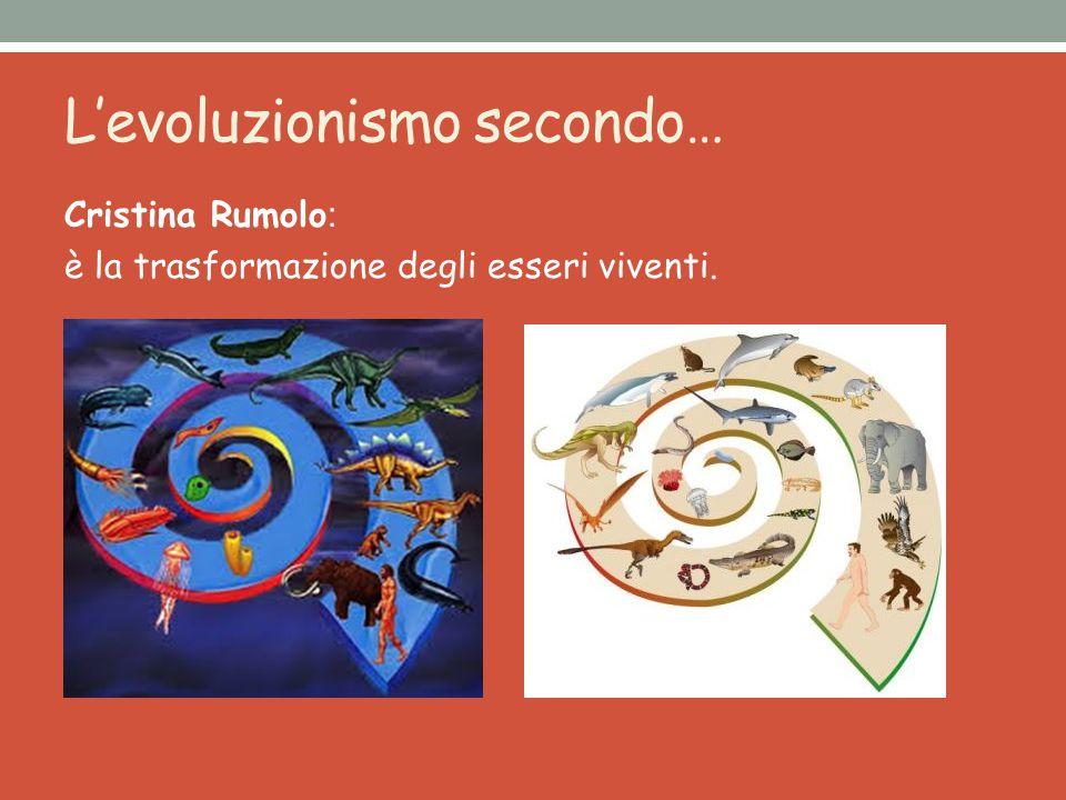 L'evoluzionismo secondo… Diana Novelletto: È l'inizio di tutto, è grazie all'evoluzione che tutto si è creato.