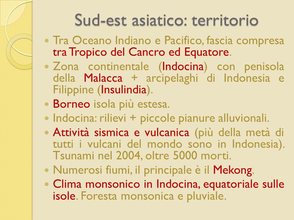 Sud-est asiatico: territorio Tra Oceano Indiano e Pacifico, fascia compresa tra Tropico del Cancro ed Equatore. Zona continentale (Indocina) con penis