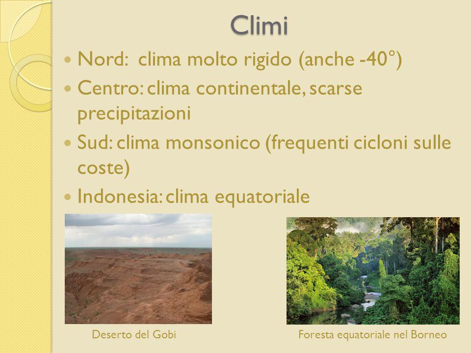 Climi Nord: clima molto rigido (anche -40°) Centro: clima continentale, scarse precipitazioni Sud: clima monsonico (frequenti cicloni sulle coste) Indonesia: clima equatoriale Foresta equatoriale nel BorneoDeserto del Gobi