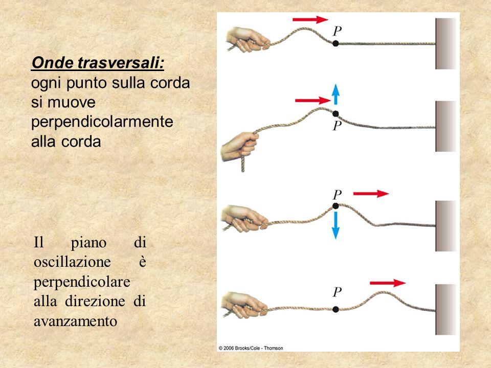Onde trasversali: ogni punto sulla corda si muove perpendicolarmente alla corda Il piano di oscillazione è perpendicolare alla direzione di avanzament