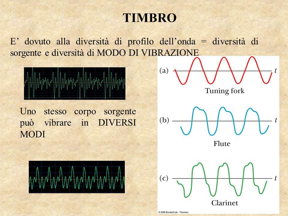 TIMBRO E' dovuto alla diversità di profilo dell'onda = diversità di sorgente e diversità di MODO DI VIBRAZIONE Uno stesso corpo sorgente può vibrare i