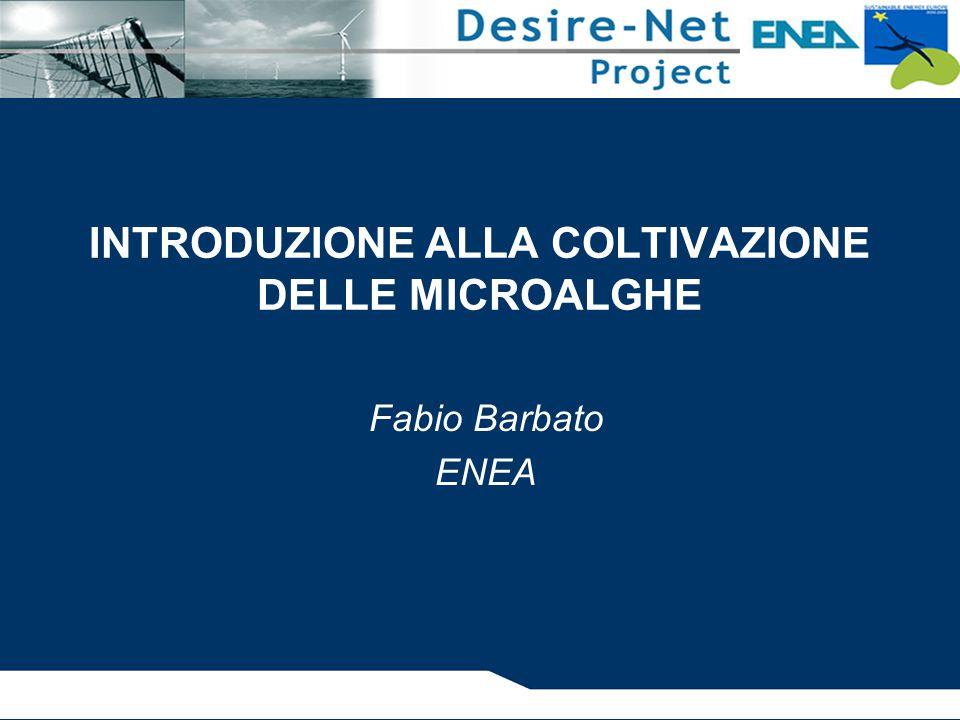 INTRODUZIONE ALLA COLTIVAZIONE DELLE MICROALGHE Fabio Barbato ENEA