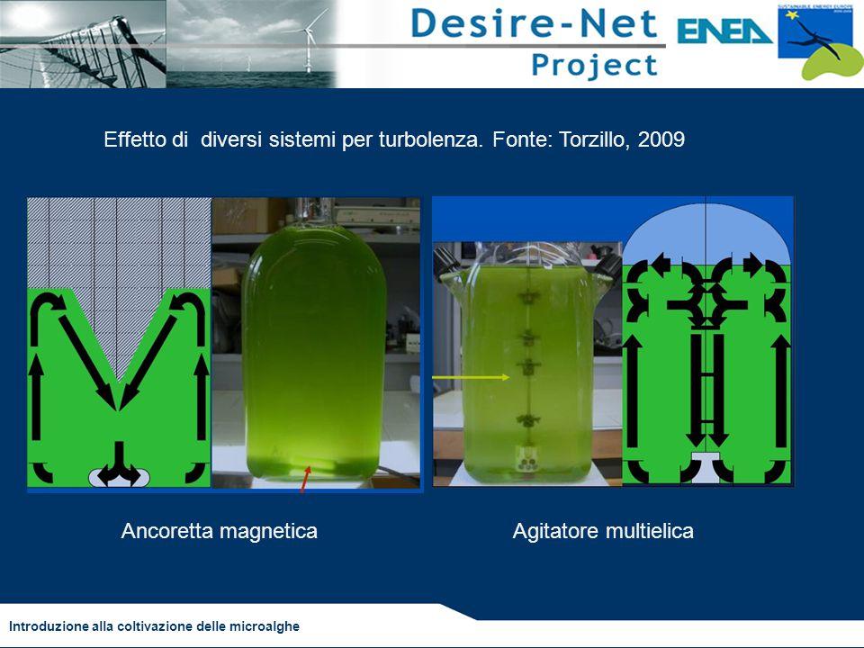 Introduzione alla coltivazione delle microalghe Effetto di diversi sistemi per turbolenza. Fonte: Torzillo, 2009 Ancoretta magneticaAgitatore multieli