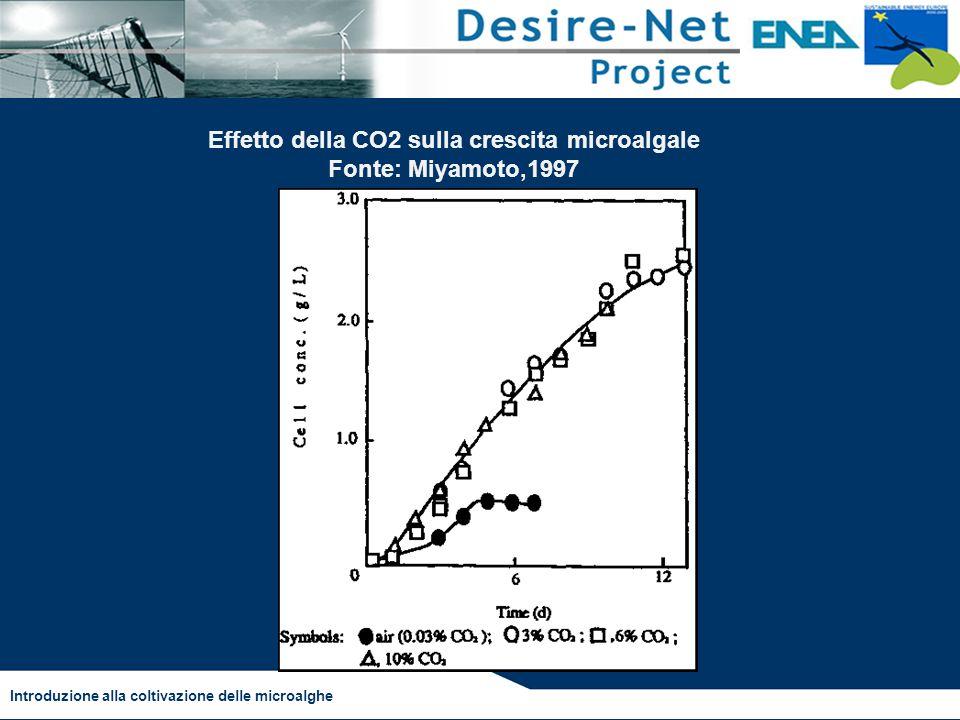 Introduzione alla coltivazione delle microalghe Effetto della CO2 sulla crescita microalgale Fonte: Miyamoto,1997