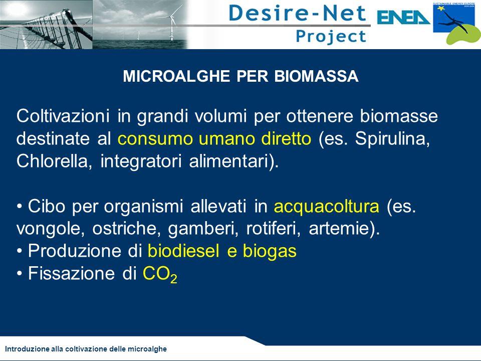 Coltivazioni in grandi volumi per ottenere biomasse destinate al consumo umano diretto (es. Spirulina, Chlorella, integratori alimentari). Cibo per or