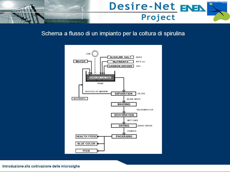 Introduzione alla coltivazione delle microalghe Schema a flusso di un impianto per la coltura di spirulina