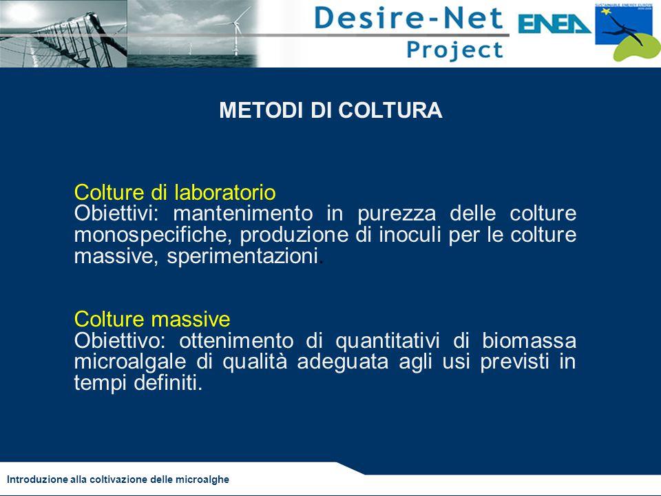Colture di laboratorio Obiettivi: mantenimento in purezza delle colture monospecifiche, produzione di inoculi per le colture massive, sperimentazioni.