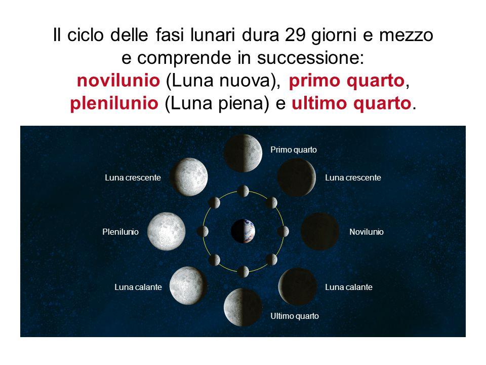 plenilunio (Luna piena)e ultimo quarto.