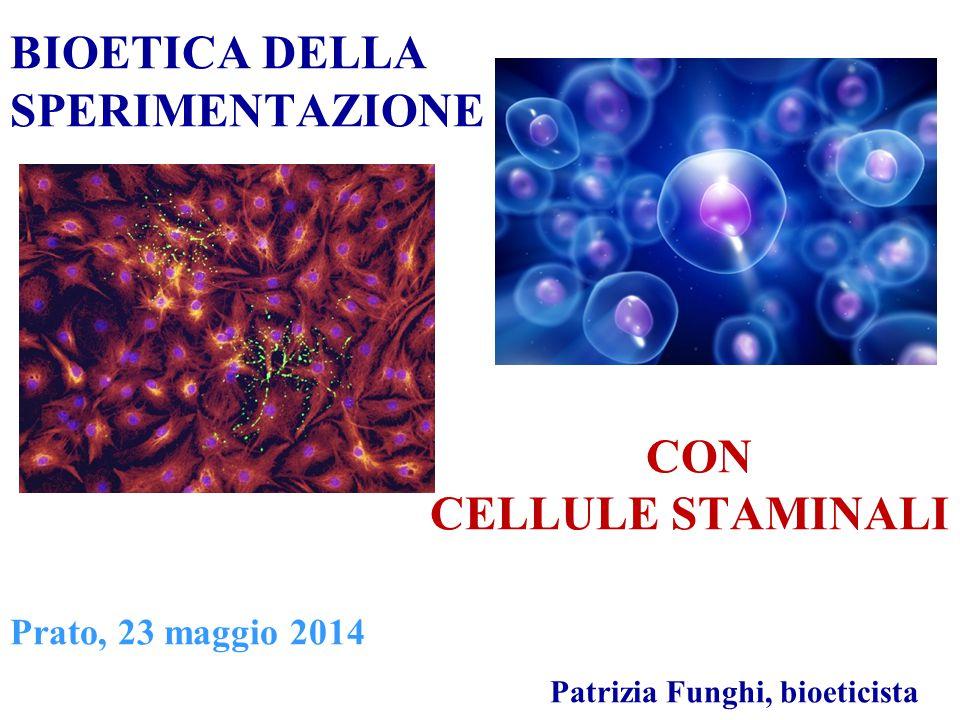 Comitato Nazionale per la Bioetica (2010) Problemi etici L'impiego delle cellule staminali umane solleva importanti problemi di natura etica che riguardano essenzialmente -l'origine delle cellule - il modo con cui esse sono derivate.