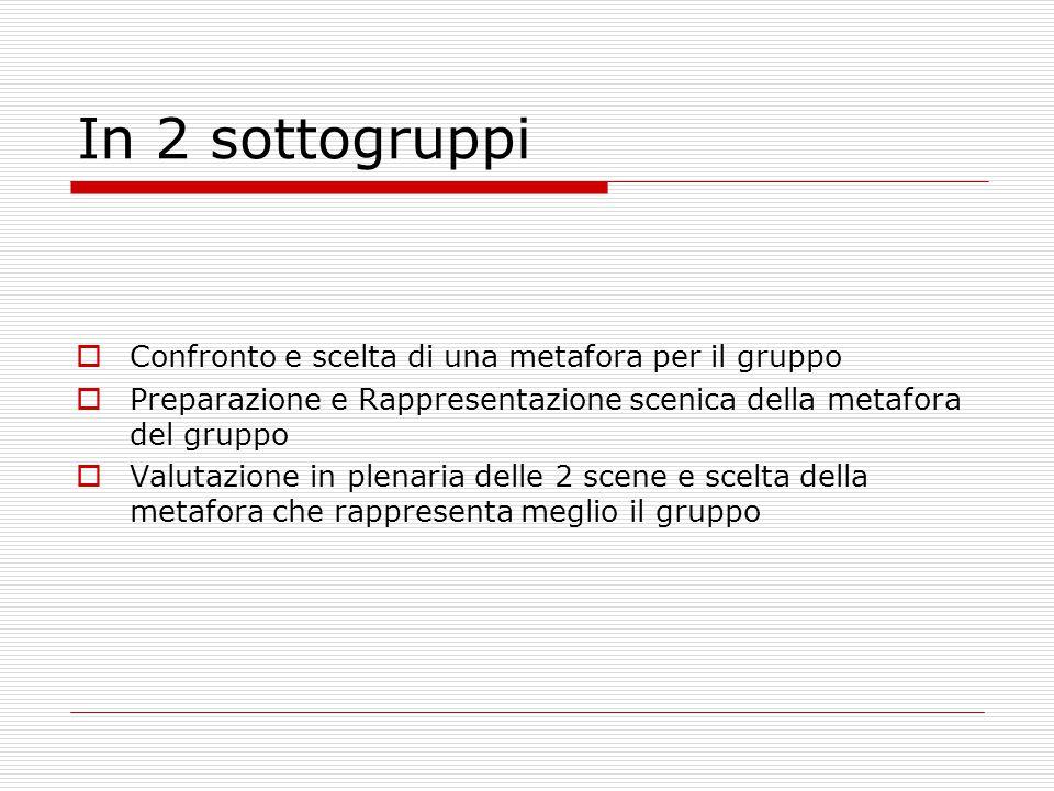 In 2 sottogruppi  Confronto e scelta di una metafora per il gruppo  Preparazione e Rappresentazione scenica della metafora del gruppo  Valutazione in plenaria delle 2 scene e scelta della metafora che rappresenta meglio il gruppo